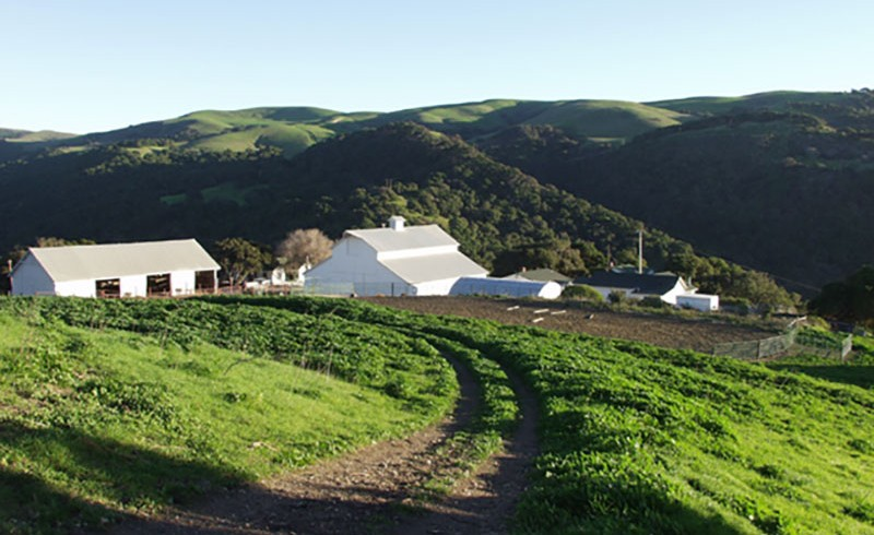 The Jalama Ranch
