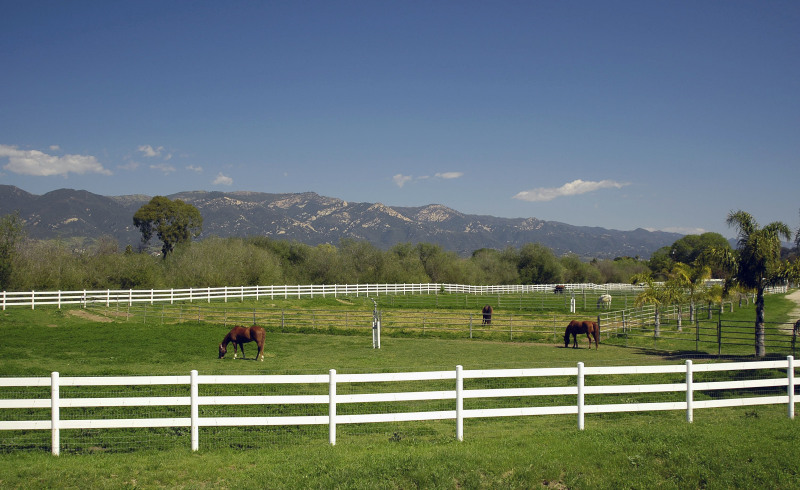Mesa Equestrian Facility